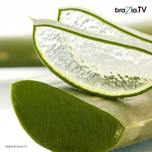 Herbal Skin Care!